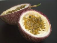Purple Passionfruit